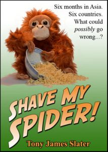 Shave My Spider Cover Website