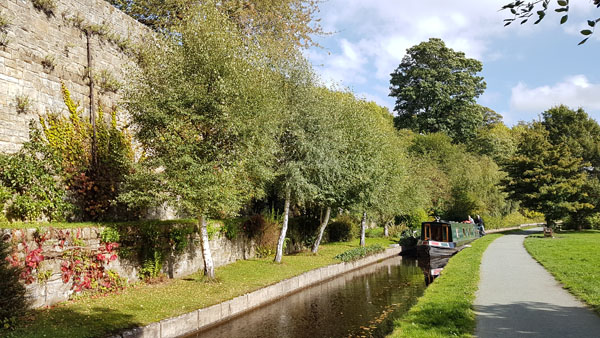 Narrow Expert Canal Section